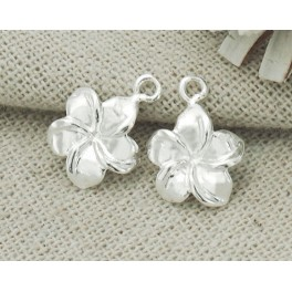 925 Sterling Silver 2 Flower Charms 11mm.